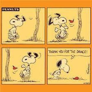 Snoopy balla